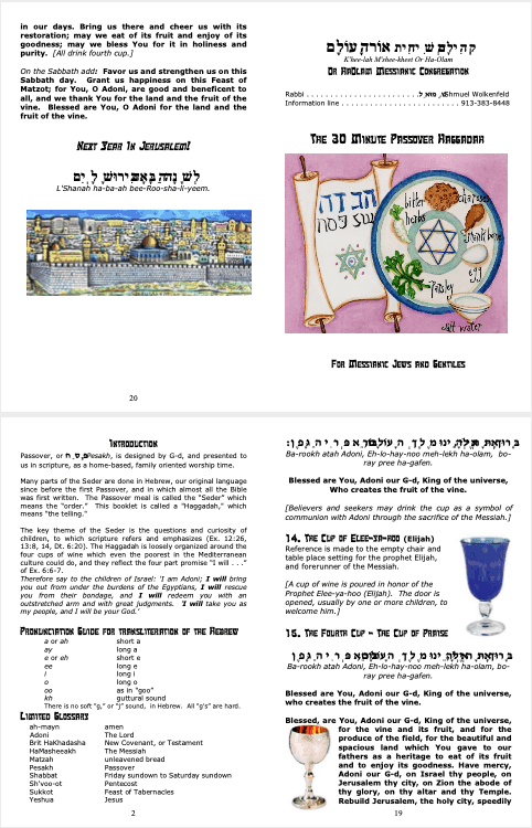 The 30 Minute Passover Haggadah for Messianic Jews and Gentiles