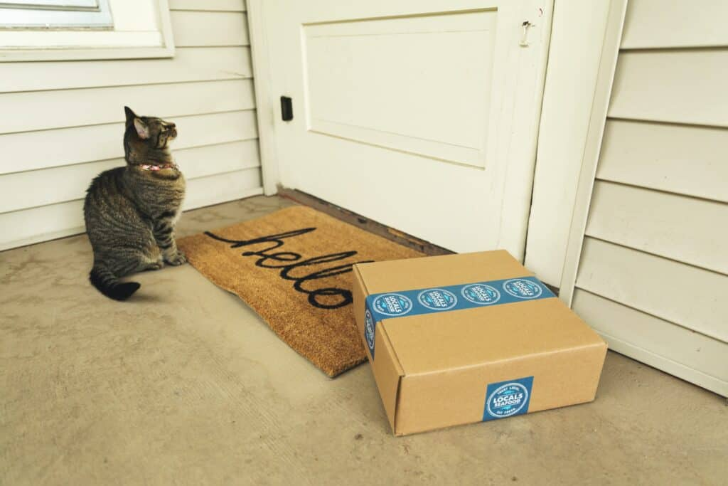 delivery box on porch at door with cat