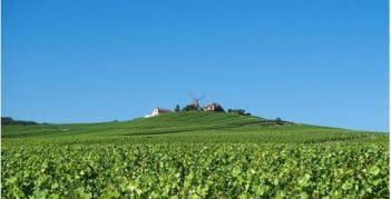Masterclass Champagne Reims