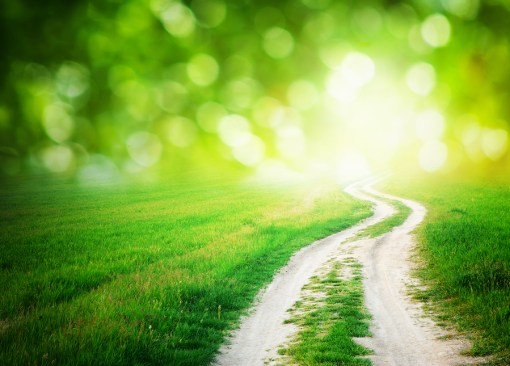 bigstock-Lane-in-meadow-and-deep-blue-s-38652739