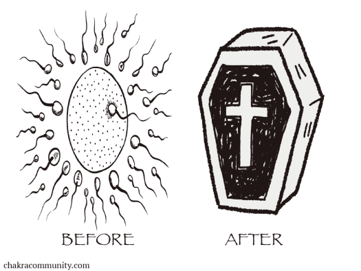 before-after-egg-coffin