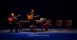 olga-pericet-bienal-2018-chalaura-la-gafa-02