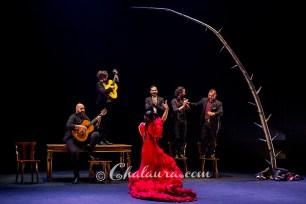 olga-pericet-bienal-2018-chalaura-la-gafa-09