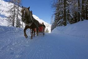 Kutschenfahrt in Pfelders im Passeiertal