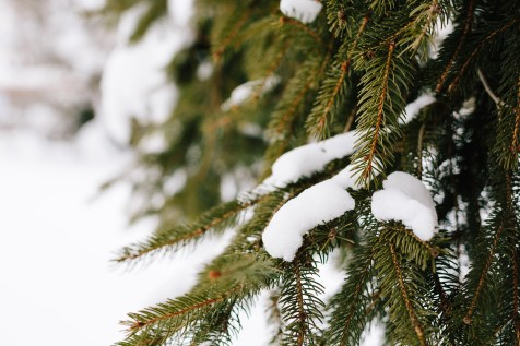 winter-chalet-hafling-leckplaatt-5
