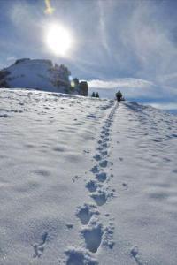Ski rando Beaufortain