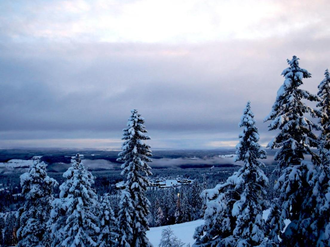 The view from one of the ski hills at Lindvallen, Sälen, in Sweden. It's not as high as the Alps (by a longshot), but it's very well set up and fantastic for family holidays.