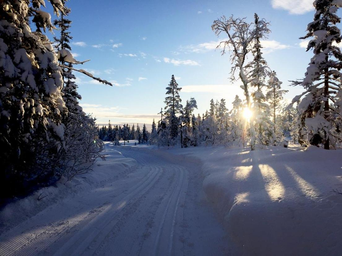 The early bird catches... this stunning, crisp, snowy sunrise in Sälen, Sweden. Speaking to the locals, it seems the snow has never been this good! Photo by Anna Sjostrom Walton for Chalk & Moss.