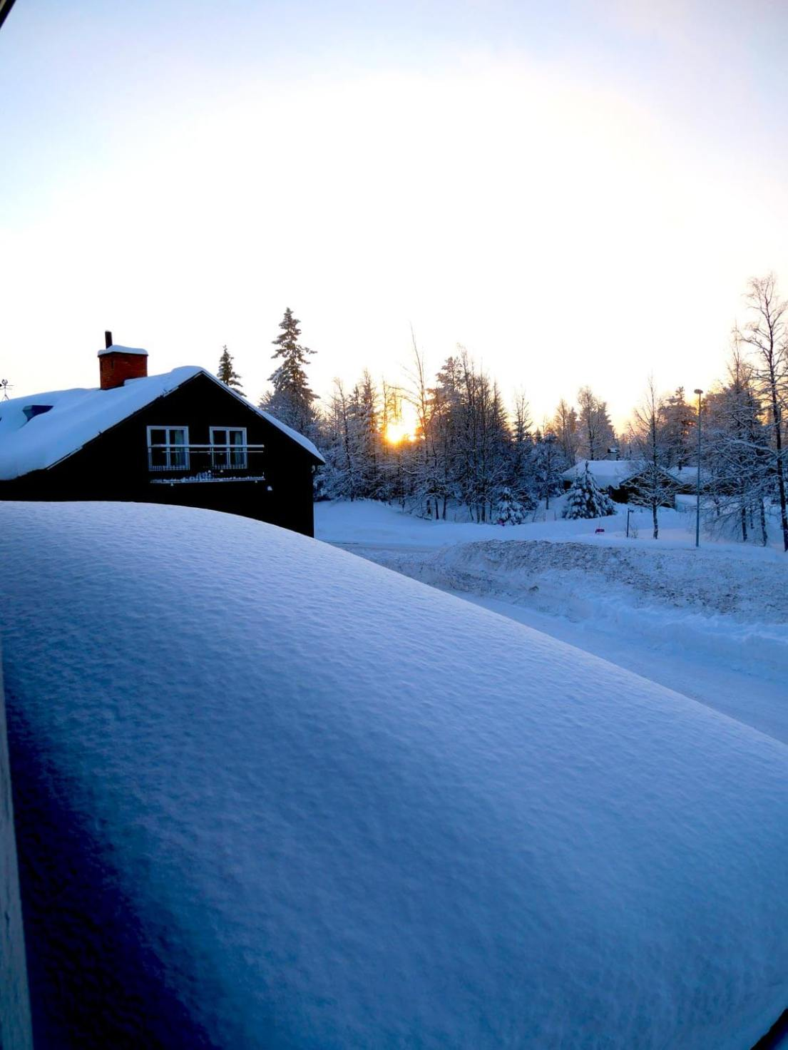 Pillowy snow in morning light, Sweden. Photo by Anna Sjostrom Walton, Chalk & Moss.
