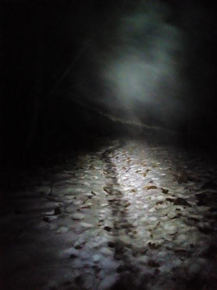 Mörk stig i skogen, endast min andedräkt syns i skenet.