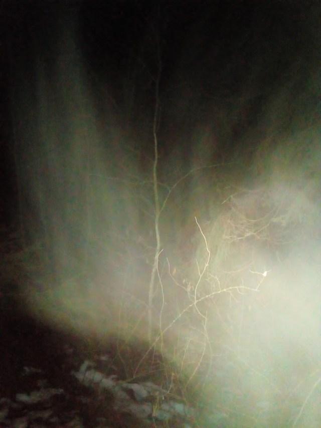 Det är ju jäkla mörkt i skogen med dålig sikt, det kan man inte komma ifrån.