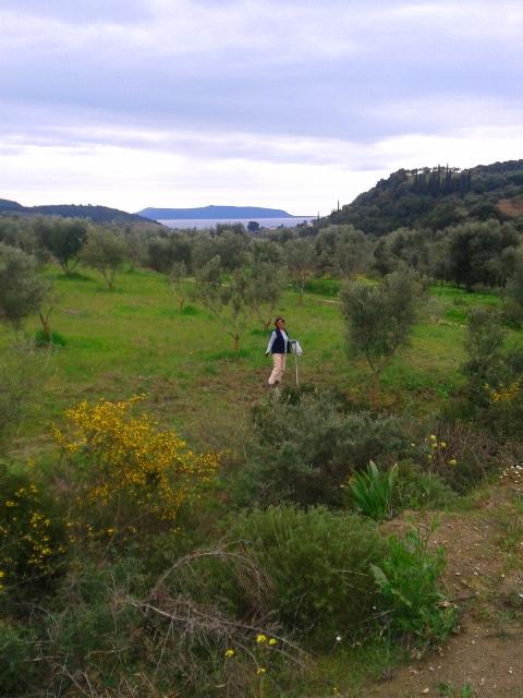 chamaloni-activities-holidays-view