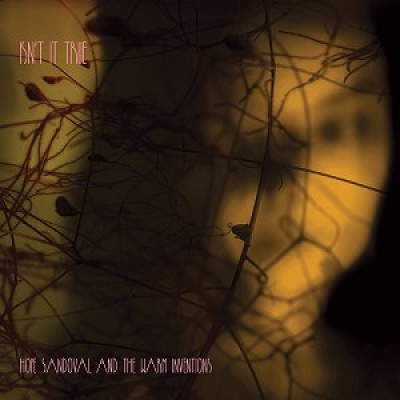 Hope_Sandoval_&_The_Warm_Intentions_Isn't_It_True_chameleon