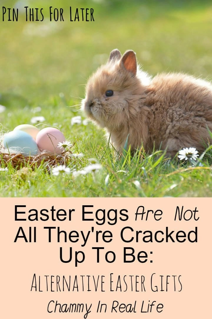 Easter eggs are not all theyre cracked up to be alternative easter with the rising cost in easter eggs its not hard to see why people are now negle Choice Image