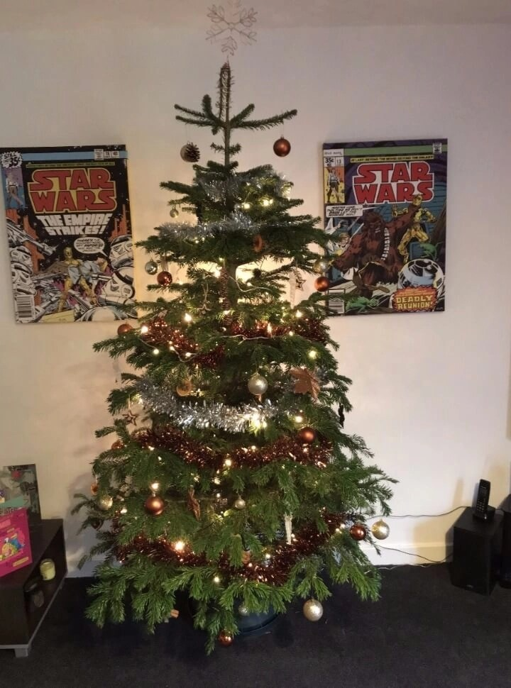 Our First Real Xmas Tree: Pines And Needles