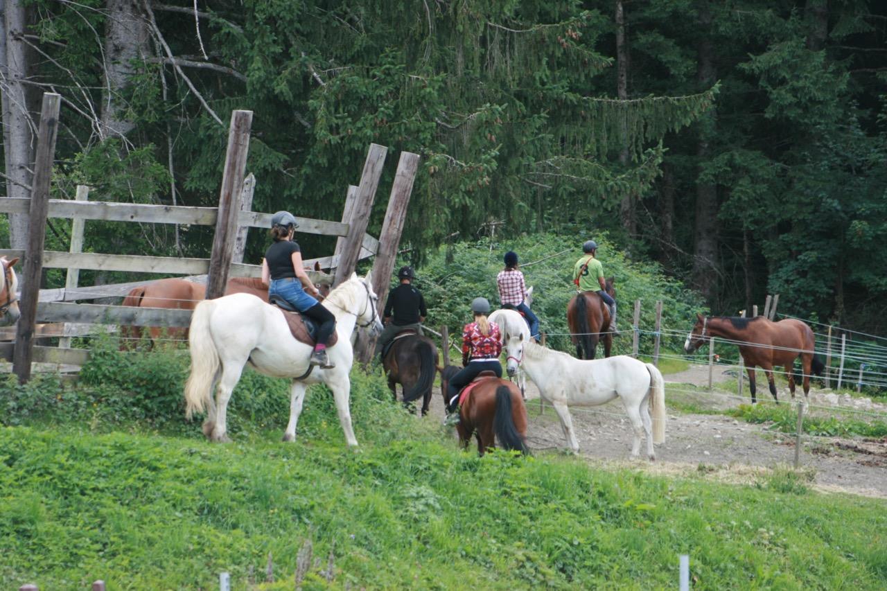 Pony Trekking Chamonix