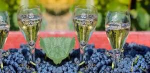 verres de champagne Mannoury