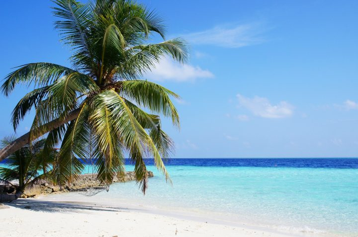 Dreaming of a Honeymoon in the Maldives......