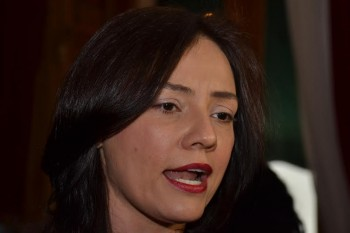 diputada Adriana Hernández Íñiguez