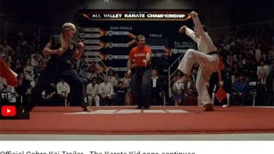 Karate Kid Cobra Kai