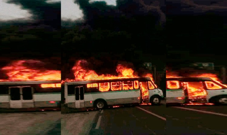 Aquila autobús