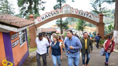 Photo of #Michoacán Ejidatarios de El Rosario, Acrecientan Visita De Mariposa Beneficiando El Medio Ambiente: SecTur