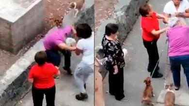 Photo of #Video Abuelita Defiende Perritos Y Morra La Golpea En CDMX