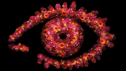 Big Brother 2010 flower logo