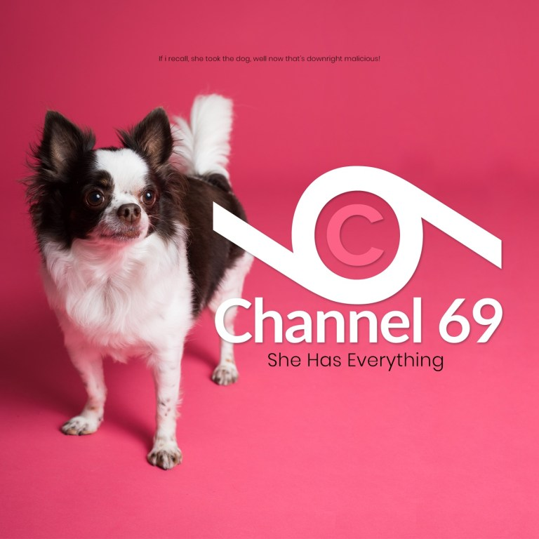 Channel 69 - She Has Everything cover