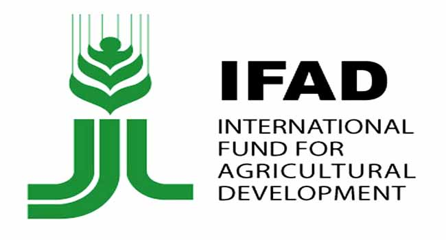 Fgn Ifad Vcdp Anambra
