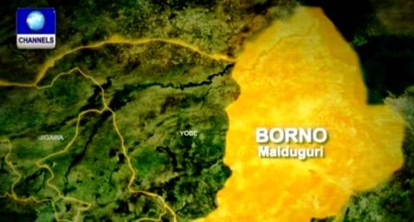 Cholera Outbreak Kills Three Persons In Borno