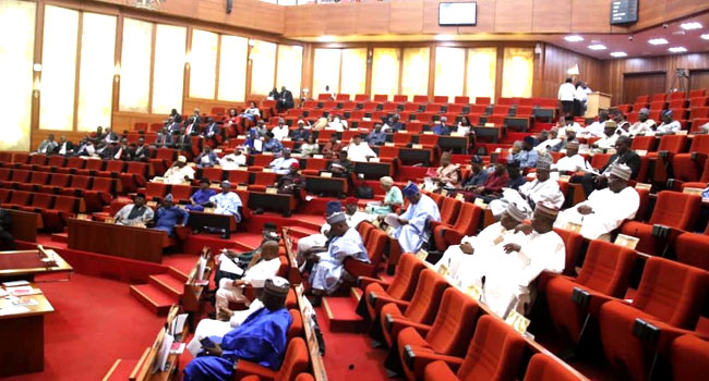 Senate Wants Action On Perpetrators Of Electoral Violence