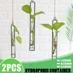 Wall Hanging Clear Glass Vase Flower Planter Bottle Tube Pots Terrarium Decor