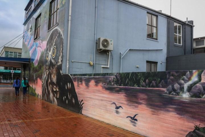 Rotorua street art
