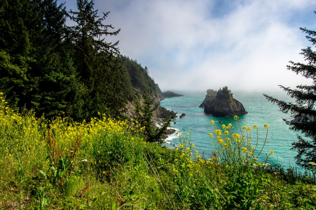 oregon-coast111