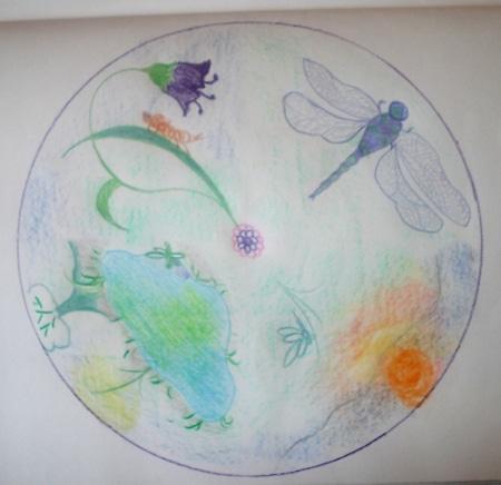 Mandala libellule