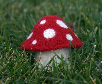 champignons en laine feutrée