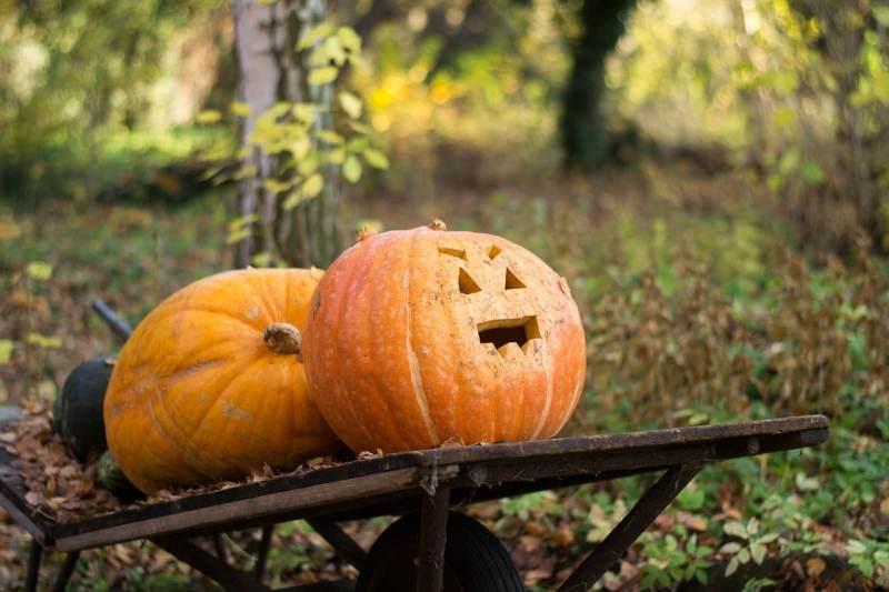 histoire pour Halloween