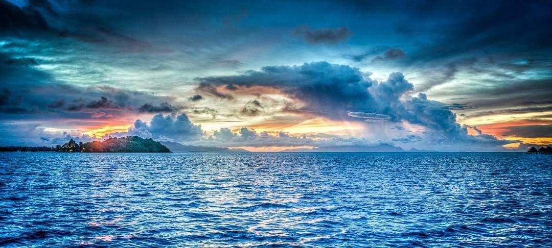 Morpurgo et la mer