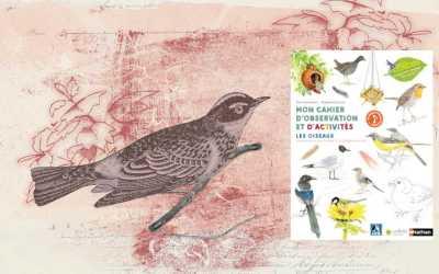 Mon cahier d'observation et d'activités, les oiseaux» une édition Nathan et Les Colibris