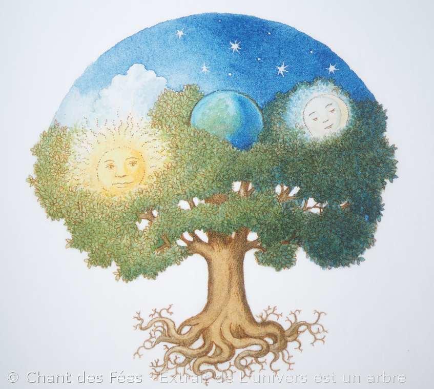 L'univers est un arbre