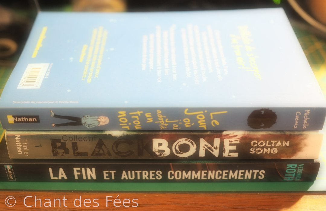 Trois romans pour nos ados : Un petit trésor, un bon thriller et un recueil de nouvelles de SF