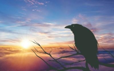 Jour 11 : Conte Inuit pour le solstice d'hiver