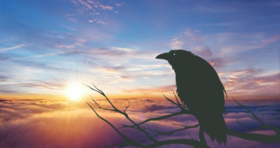 Jour 11 : Conte Inuit pour le solstice d\'hiver