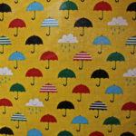 Brolly Rain coat