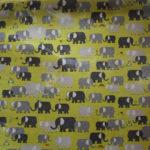 Elephant rain coat