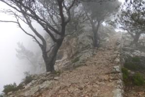 Noch liegt der Camí im Nebel.