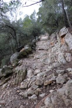 Erster Aufstieg am Morgen vertreibt Kummer und Sorgen... hier geht's hoch zum Weg des Erzherzogs.