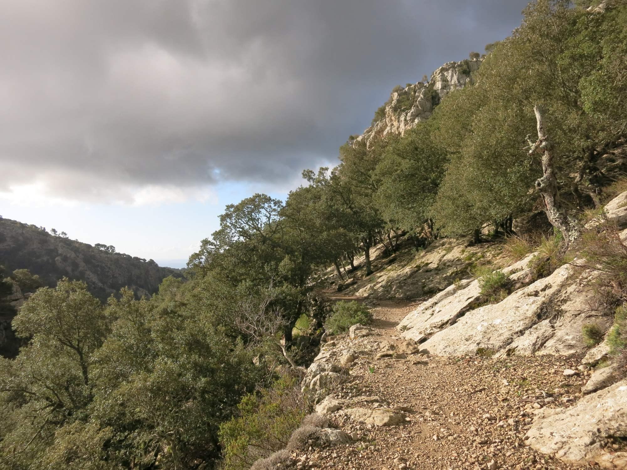 Steiniger Weg zum Refugi Tossals Verds (GR221)