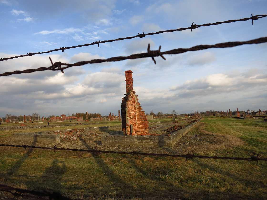 Auschwitz Draht